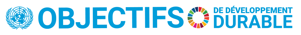 French SDG Logo