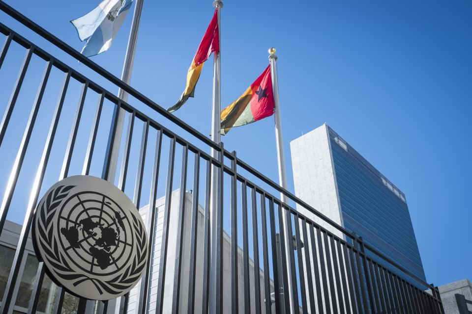 View of flags in front of the United Nations Headquarters in New York